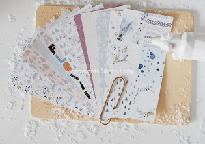 NORDICA -Notebook edition-zestaw 12 papierów 10x21 cm /paper set of 12