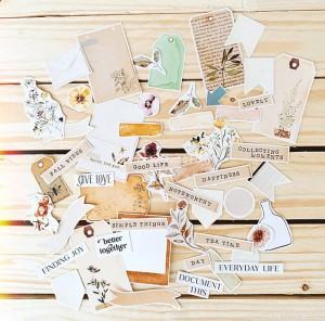 Herbarium- paper die cut elements